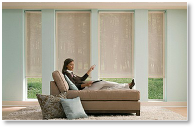 Hunter Douglas Motorized